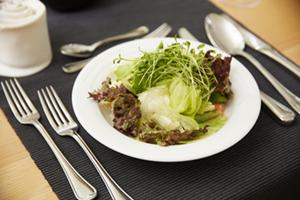 steinhalde_mittagstisch_salat